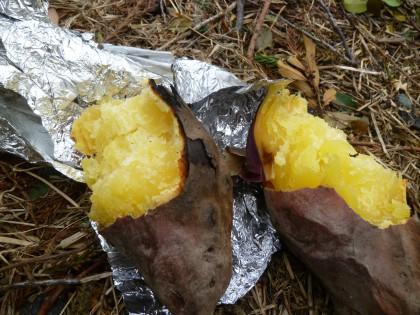 美味しそうに焼けた焼き芋