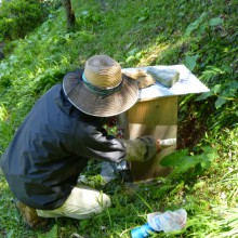 裏山4号の巣箱設置作業