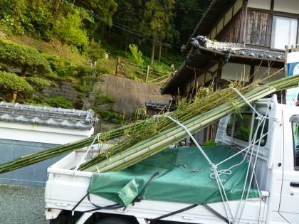 イノシシ用と菜園用に切り出した竹