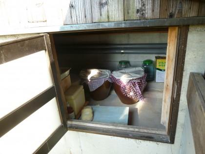 隠居の地下室に収まった梅干し壷5つ