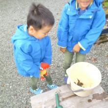 カニに餌をやる孫たち