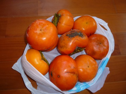 今朝叔母が届けてくれた内子特産の富有柿