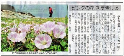 その後、5月15日付け愛媛新聞朝刊7面に掲載された記事