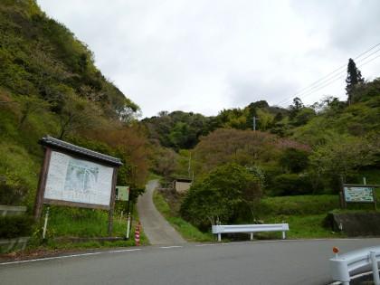 千本目の桜を植えた歌仙の滝