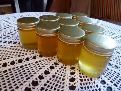 今年の蜂蜜は上出来の仕上がりです