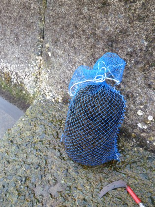自作の海草収穫網袋