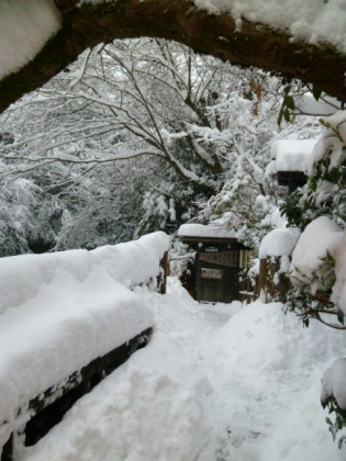 大雪が積った福元屋の玄関先