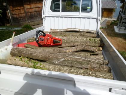 人間牧場へ到着した原木