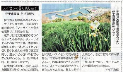水仙の開花を告げる新聞記事